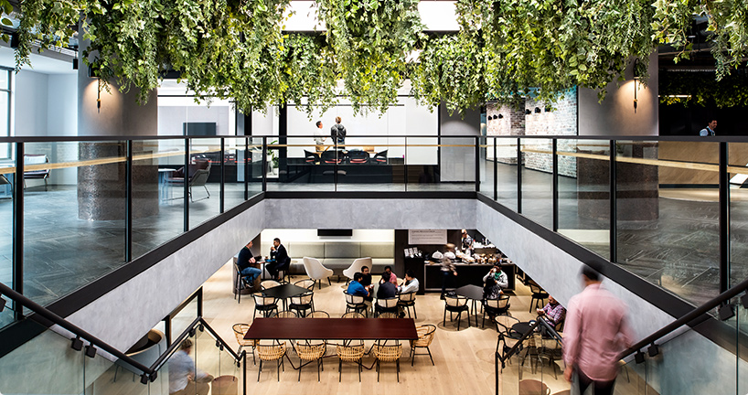 The Advantages And Disadvantages Of The Open Plan Office